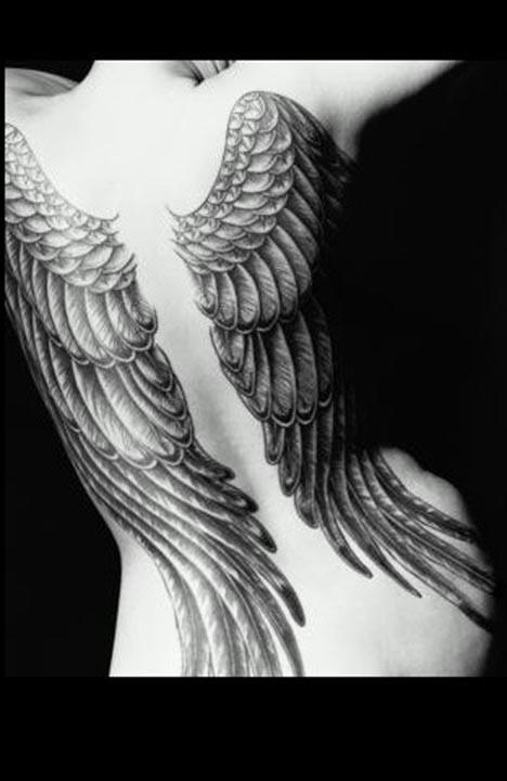wings.jpe
